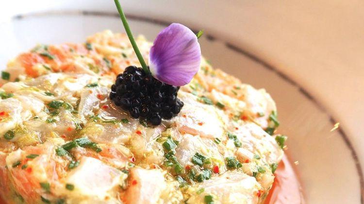 wt-marloe-fish-terrine-paris-restaurant