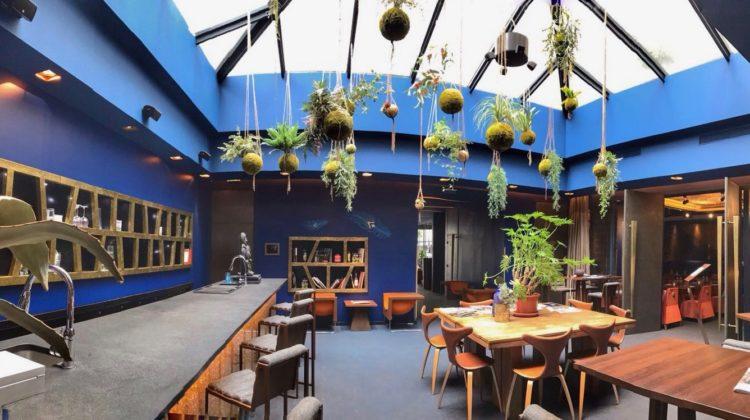 Hotel 1K Paris, Bar